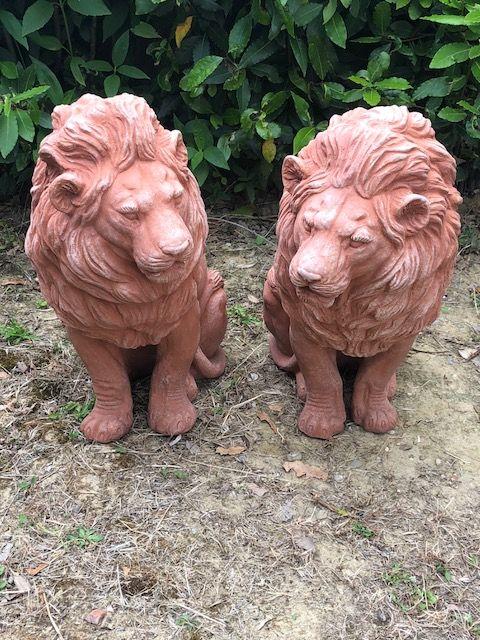 Coppia di leoni h58 36P 21L