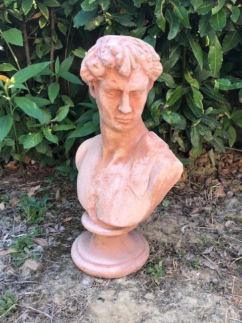 Busto David h48